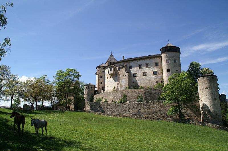Burgen in Südtirol